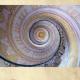 El Círculo de Bellas Artes y La Capilla Real de Madrid: Círculo Bach