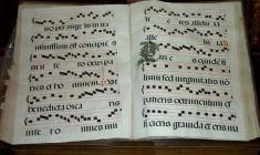 Taller de Canto Gregoriano con Rupert Damerell