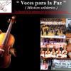 Voces para la Paz (Músicos solidarios), concierto 2010