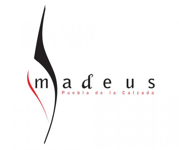 Coro Amadeus